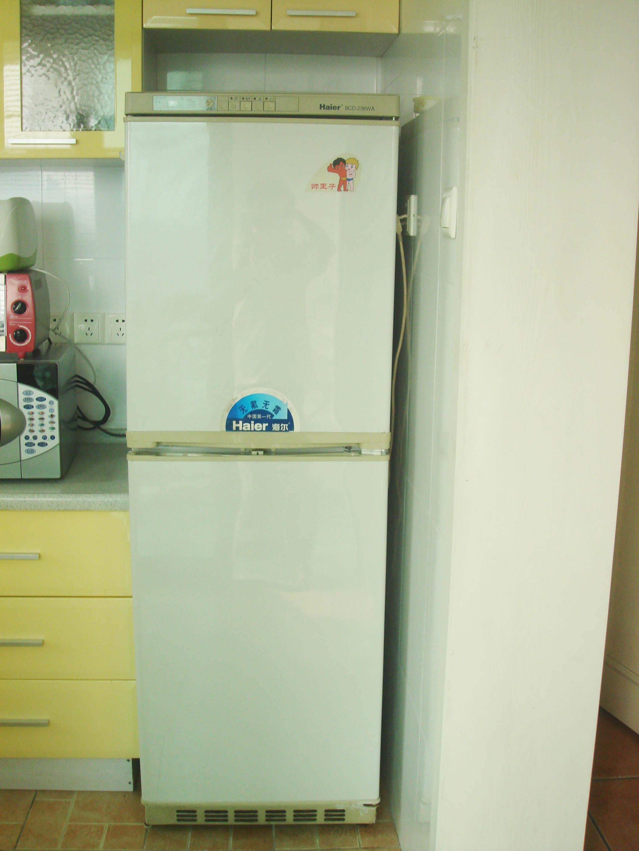 风泠冰箱内部结构图