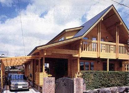 按国际标准施工的轻型木结构房子