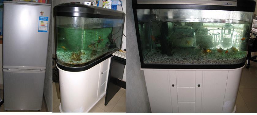 844816) 风水鱼缸