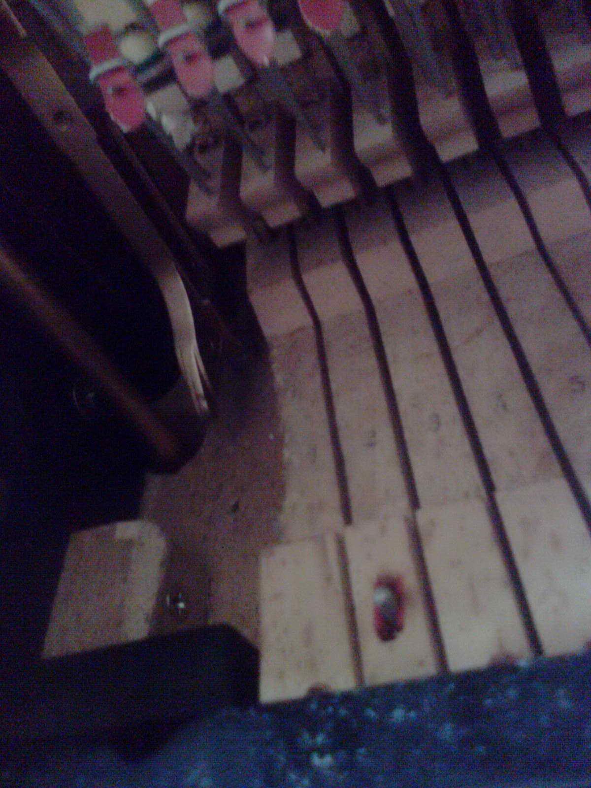 钢琴数字谱 求电子琴入门乐谱,我当了一名义务家教,目前负
