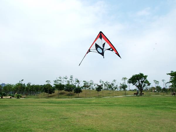 春天,让我们去放风筝吧!--------深圳沙河公园