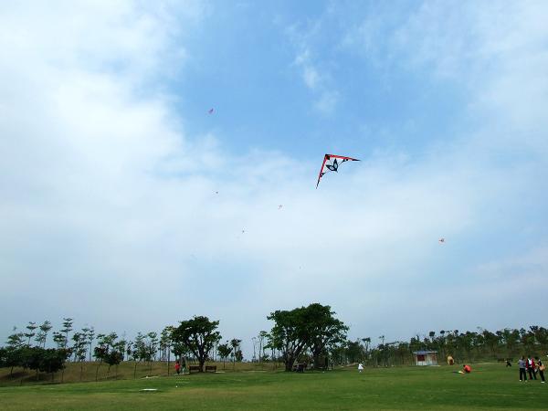 春天,让我们去放风筝吧!--深圳沙河公园 - 深圳房