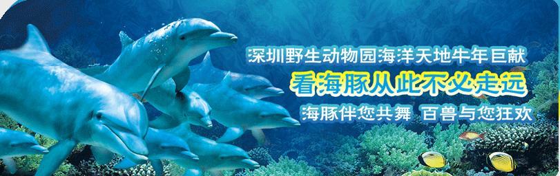 深圳动物园邀请您的欢乐盛宴,5人报名另送70元电影票天天发团,联系