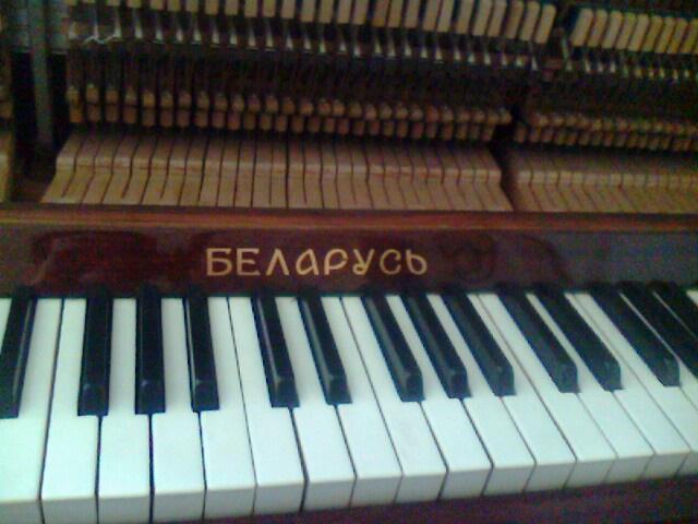 9、雅马哈U3,蒋女士家的琴,蒋女士家的书房很有特色,除了钢琴外、还有书架和沙发及音响和电视,可以说是麻雀虽小五脏俱全,布置得很温馨很有特色,而且很漂亮。U3可以说是立式琴中比较高的型号,不止是高度是131的(从图中可以看到,调律的时候可以不用拆键盘盖,击弦机位置比较高,止音夹很容易就可以用),市场价格也高,目前市场价应该是在6-7万之间,以这个价格其实可以买个很好的珠江三角钢琴。但估计很多客户家里空间没有那么大,若是以深圳的房价,整一个客厅放三角琴,估计得百八十万的。所以若是家里空间有限,又想买个比较好