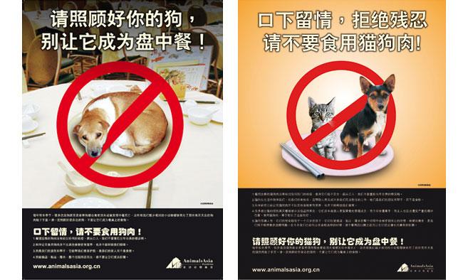 以下中国各地动物保护组织联合签名