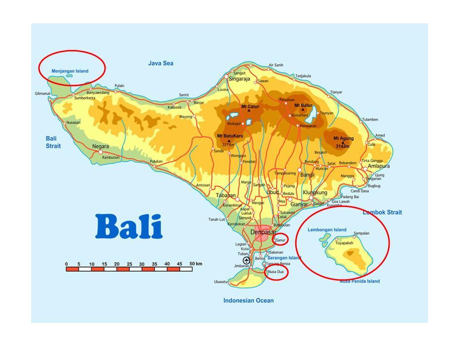 巴厘岛地图高清中文版 图