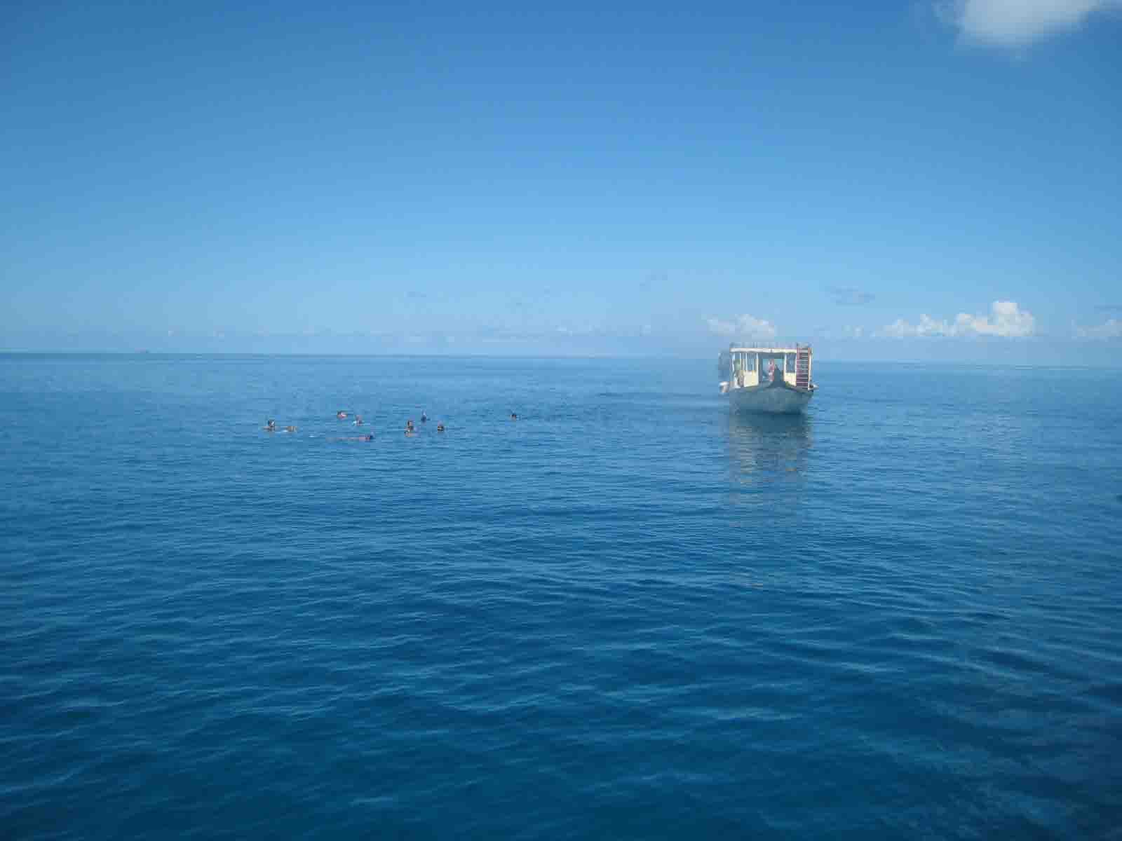 我的蜜月,我的双鱼岛----olhuveli beach & spa  - 房