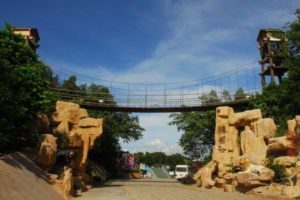 深圳野生动物园以创建国家aaaa级景区为契机,全面改善园区服务设施