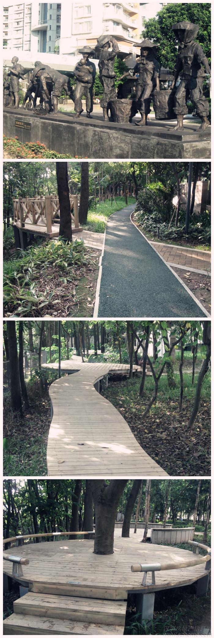 深圳滨海生态公园,红树林公园