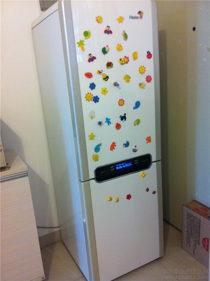 冰箱,海尔变频白马王子