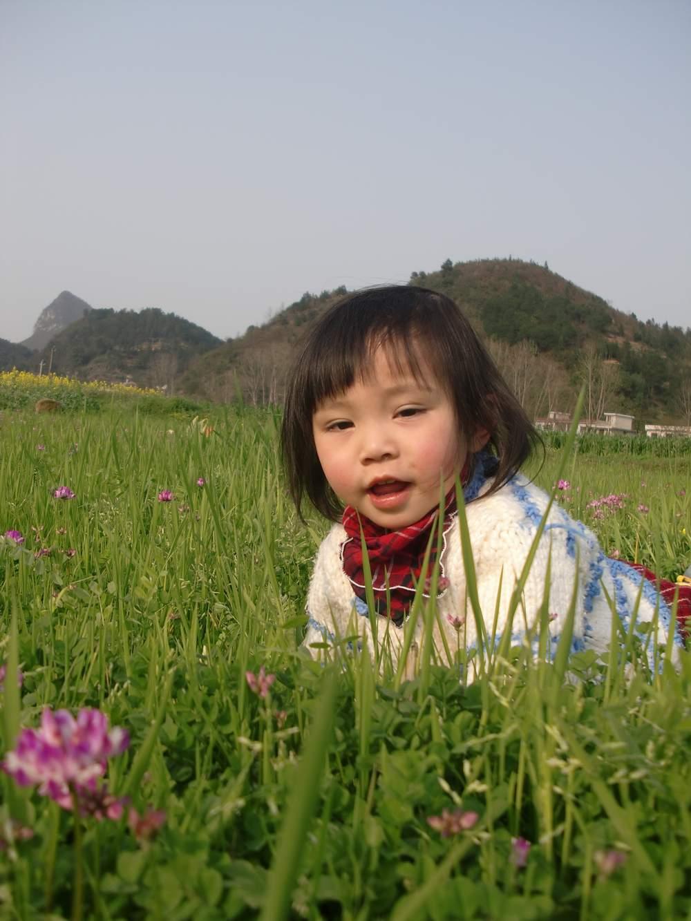 在菜地里找春天 - 深圳房地产信息网论坛