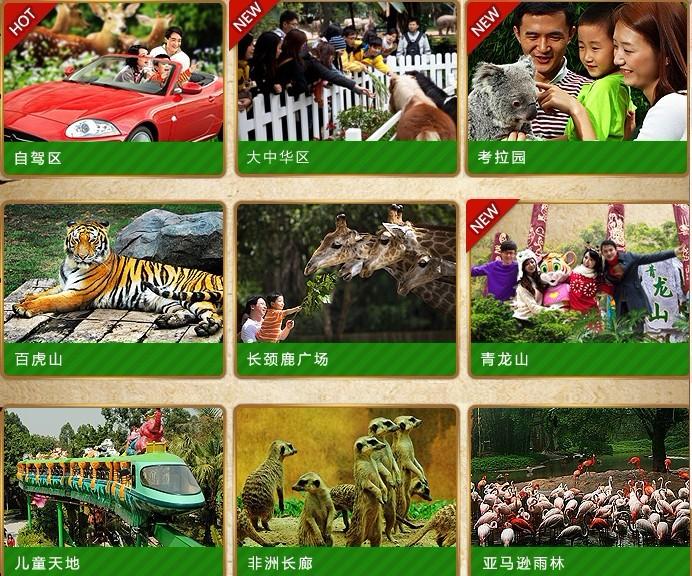 有4月3日去广州长隆野生动物园的吗?