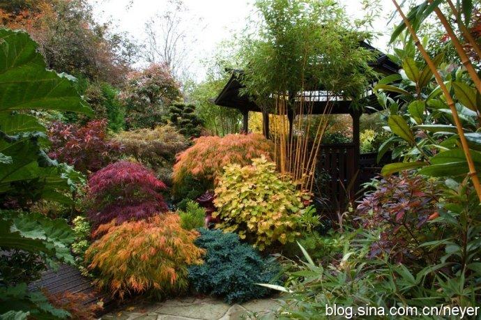 长方形花坛花境设计