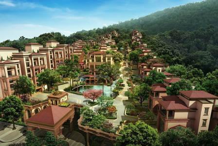 联排,空中别墅,是深圳特区最大的纯墅供应,蛇口半岛唯一新墅.