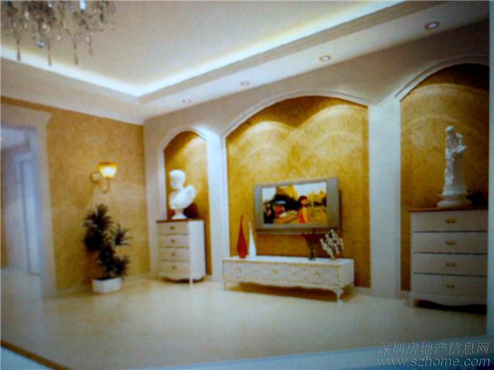 阳光海9栋19b客厅电视背景