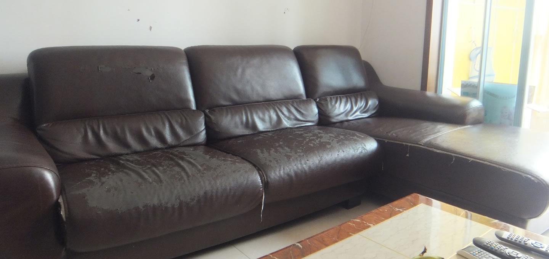 南山家里旧真皮沙发免费送了