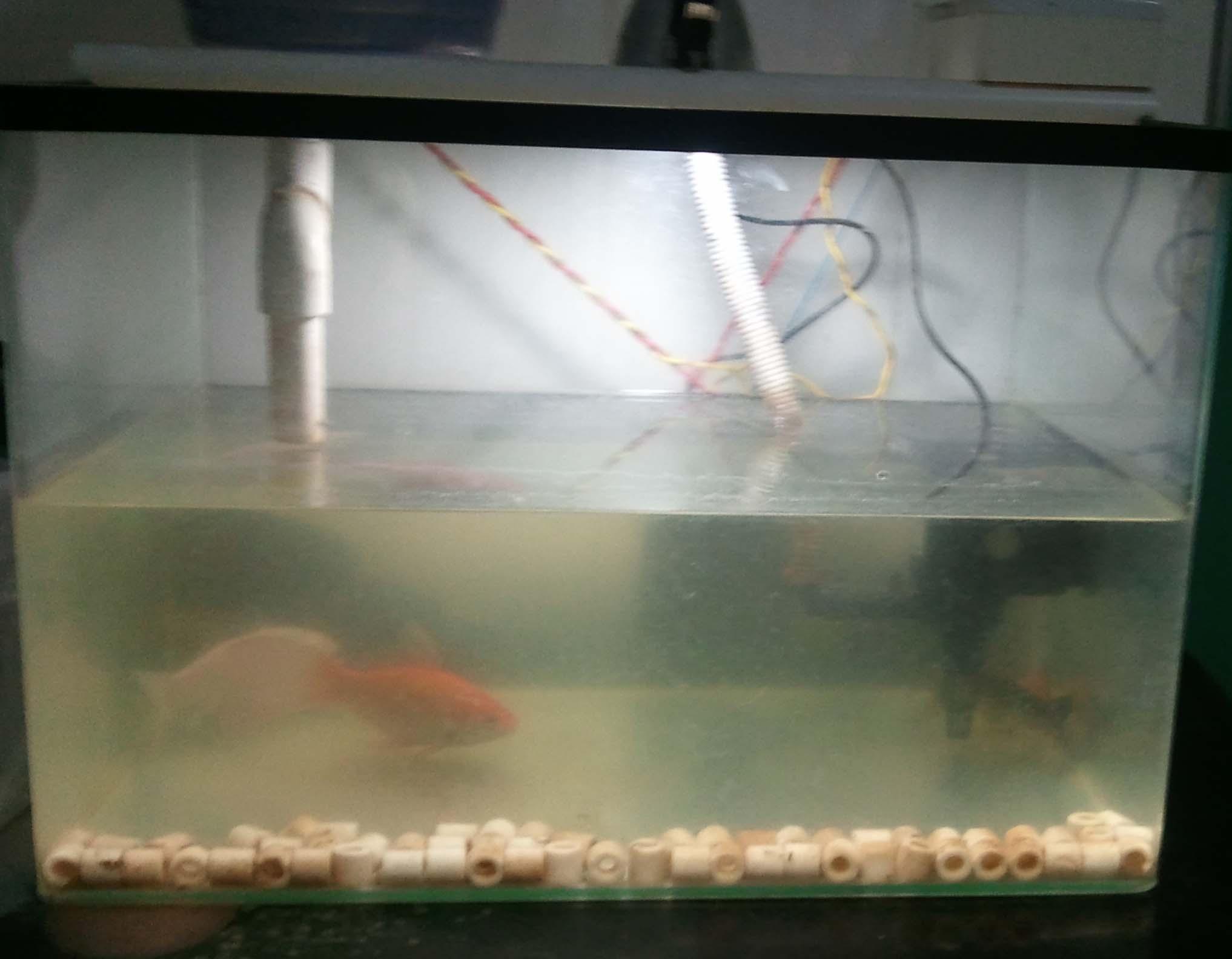 鱼缸电烤箱饮水机吸尘器换米换物