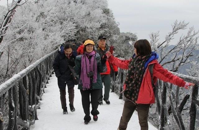 小森林电影雪景