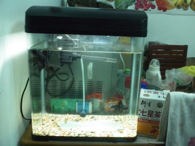 佳宝40厘米宽小鱼缸自带过滤泵带照明
